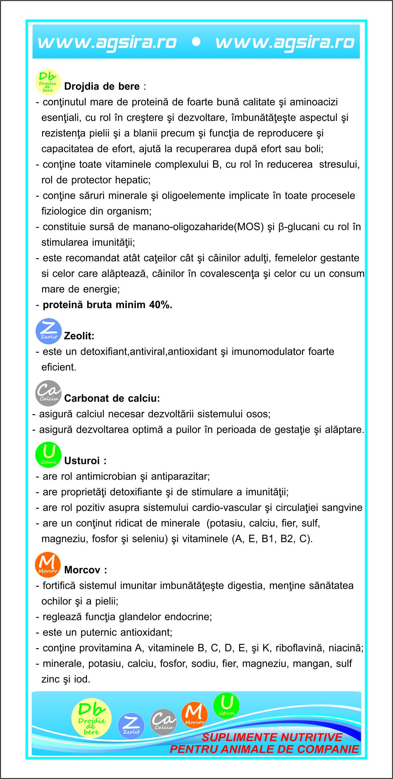 flyer-animale-de-companie-caini2