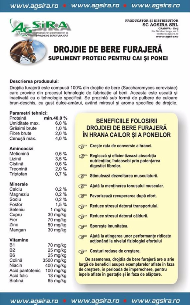 DROJDIE DE BERE FURAJERA SUPLIMENT PROTEIC PENTRU CAI SI PONEI