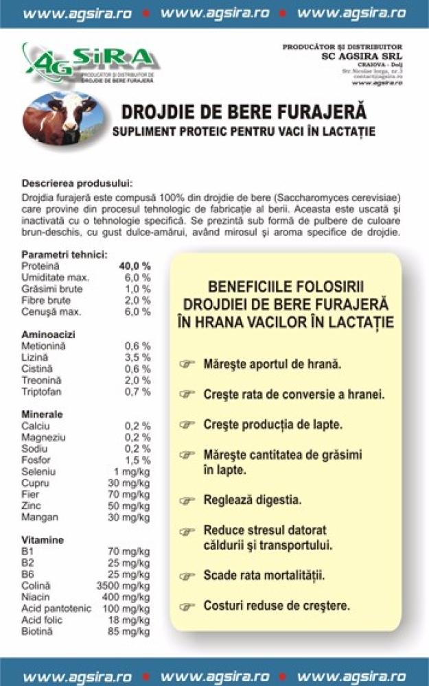 DROJDIE DE BERE FURAJERA SUPLIMENT PROTEIC PENTRU PENTRU VACI IN LACTATIE